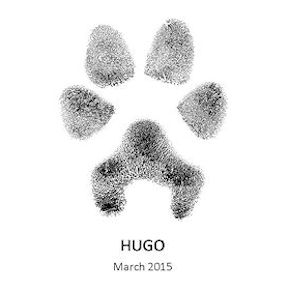 hugo_paw_ink_print_for_web